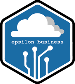 Epsilon Business